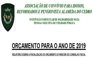 ORÇAMENTO PARA 2019 (PARECER DO CONSELHO FISCAL)